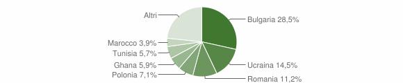 Grafico cittadinanza stranieri - Mondragone 2019