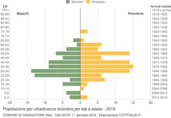 Grafico cittadini stranieri - Casavatore 2019