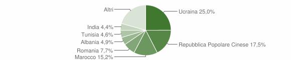 Grafico cittadinanza stranieri - Montoro 2005