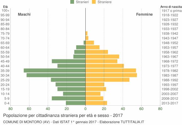 Grafico cittadini stranieri - Montoro 2017