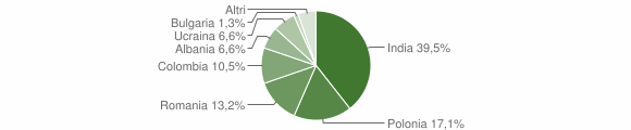 Grafico cittadinanza stranieri - Visciano 2019