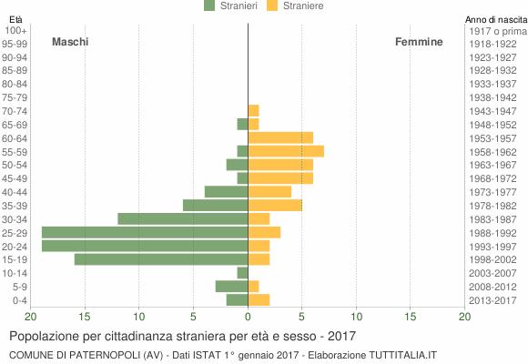 Grafico cittadini stranieri - Paternopoli 2017