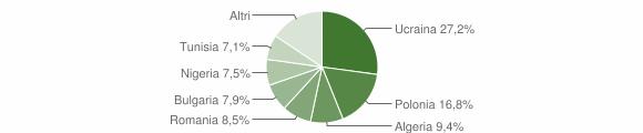 Grafico cittadinanza stranieri - Qualiano 2010