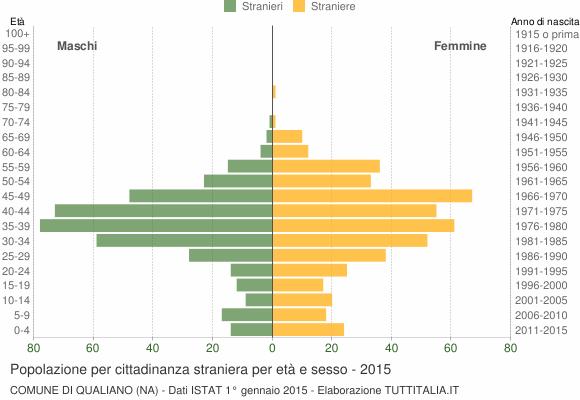 Grafico cittadini stranieri - Qualiano 2015
