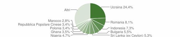 Grafico cittadinanza stranieri - Casoria 2019