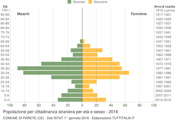Grafico cittadini stranieri - Parete 2016
