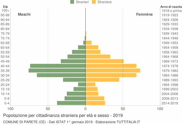 Grafico cittadini stranieri - Parete 2019