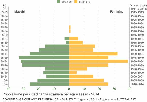 Grafico cittadini stranieri - Gricignano di Aversa 2014