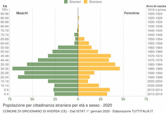 Grafico cittadini stranieri - Gricignano di Aversa 2020