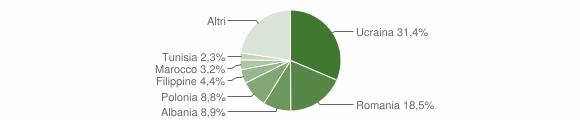 Grafico cittadinanza stranieri - Santa Maria Capua Vetere 2019