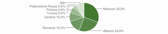 Grafico cittadinanza stranieri - Macerata Campania 2015