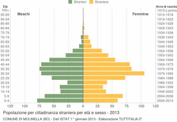 Grafico cittadini stranieri - Molinella 2013
