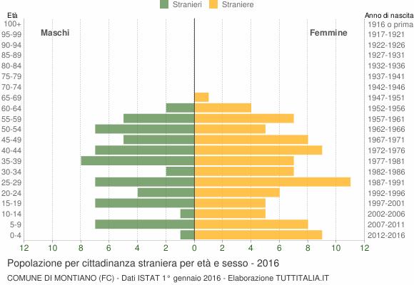 Grafico cittadini stranieri - Montiano 2016
