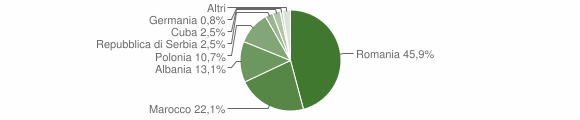 Grafico cittadinanza stranieri - Premilcuore 2013