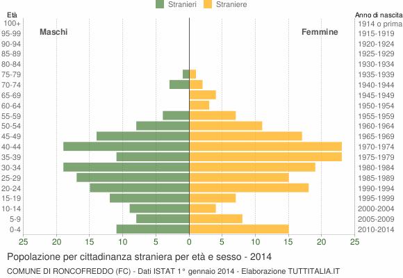 Grafico cittadini stranieri - Roncofreddo 2014