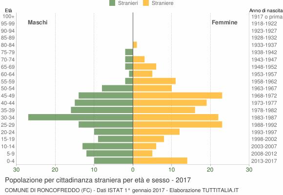 Grafico cittadini stranieri - Roncofreddo 2017