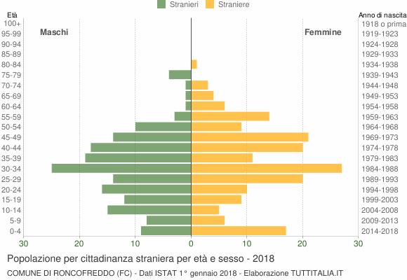 Grafico cittadini stranieri - Roncofreddo 2018