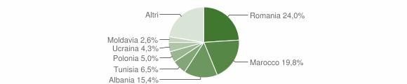Grafico cittadinanza stranieri - Imola 2009