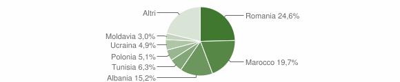 Grafico cittadinanza stranieri - Imola 2010
