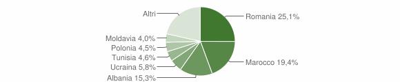 Grafico cittadinanza stranieri - Imola 2012