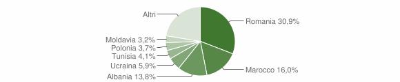 Grafico cittadinanza stranieri - Imola 2017