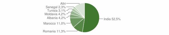Grafico cittadinanza stranieri - Busseto 2018