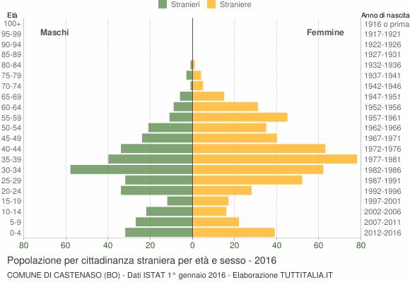 Grafico cittadini stranieri - Castenaso 2016