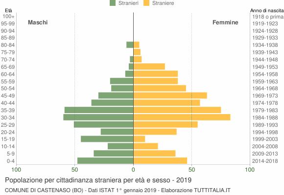 Grafico cittadini stranieri - Castenaso 2019