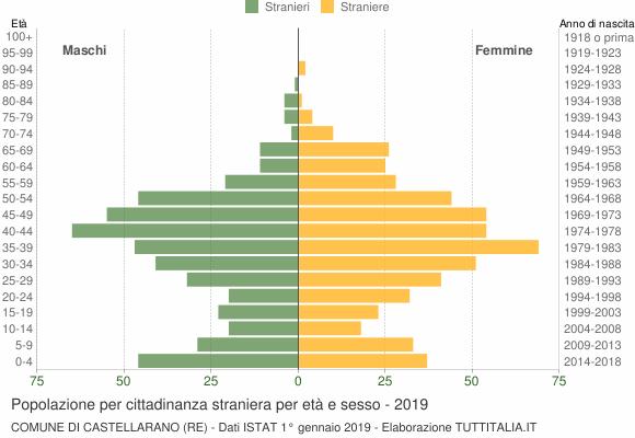 Grafico cittadini stranieri - Castellarano 2019