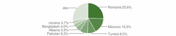 Grafico cittadinanza stranieri - Medicina 2009