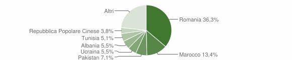Grafico cittadinanza stranieri - Medicina 2019
