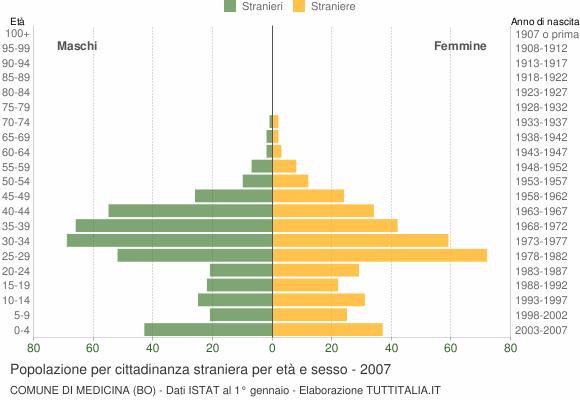 Grafico cittadini stranieri - Medicina 2007
