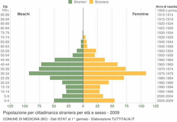 Grafico cittadini stranieri - Medicina 2009