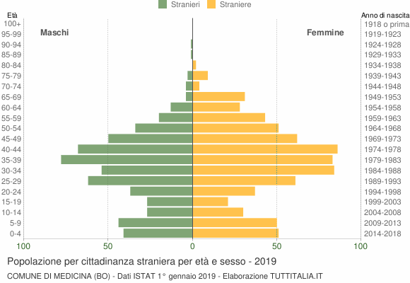 Grafico cittadini stranieri - Medicina 2019