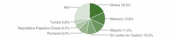 Grafico cittadinanza stranieri - Castelnuovo Rangone 2015
