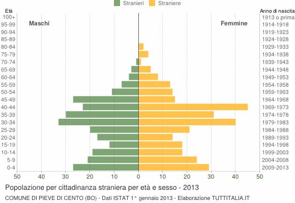 Grafico cittadini stranieri - Pieve di Cento 2013
