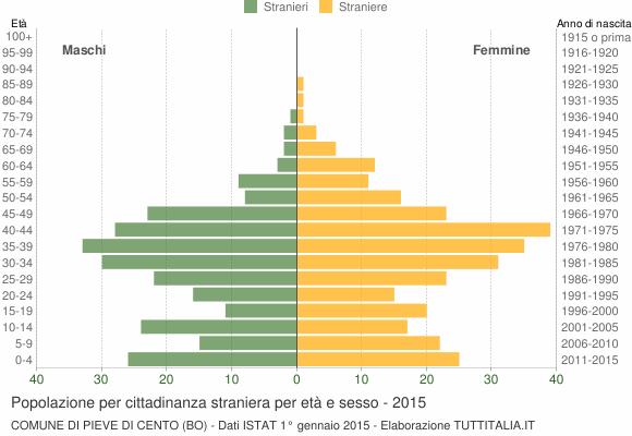 Grafico cittadini stranieri - Pieve di Cento 2015