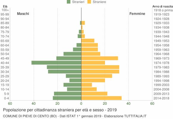 Grafico cittadini stranieri - Pieve di Cento 2019