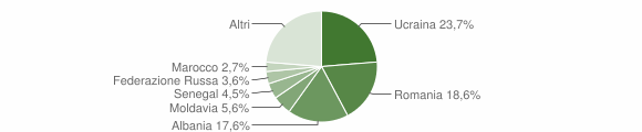 Grafico cittadinanza stranieri - Cattolica 2019