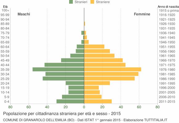 Grafico cittadini stranieri - Granarolo dell'Emilia 2015