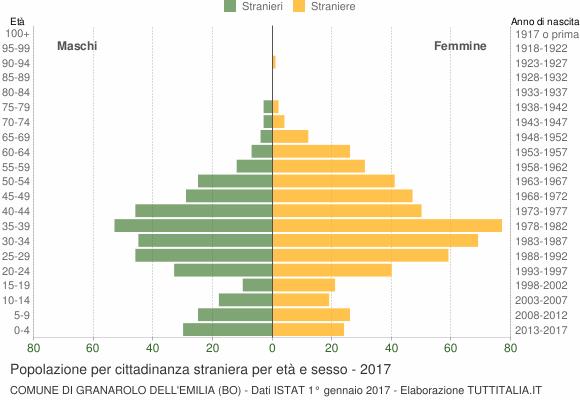 Grafico cittadini stranieri - Granarolo dell'Emilia 2017