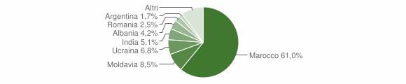Grafico cittadinanza stranieri - Vetto 2019