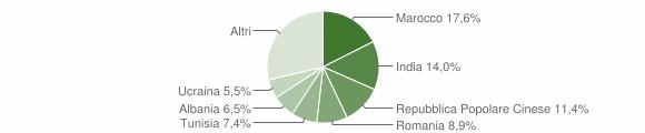 Grafico cittadinanza stranieri - Cadelbosco di Sopra 2010