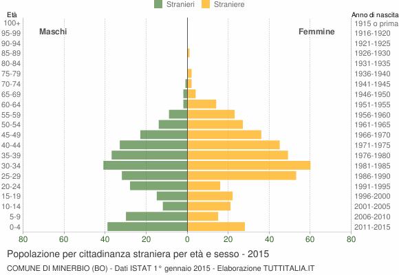 Grafico cittadini stranieri - Minerbio 2015