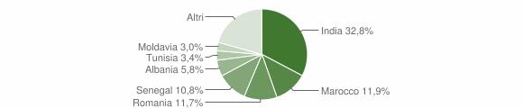 Grafico cittadinanza stranieri - Soragna 2019