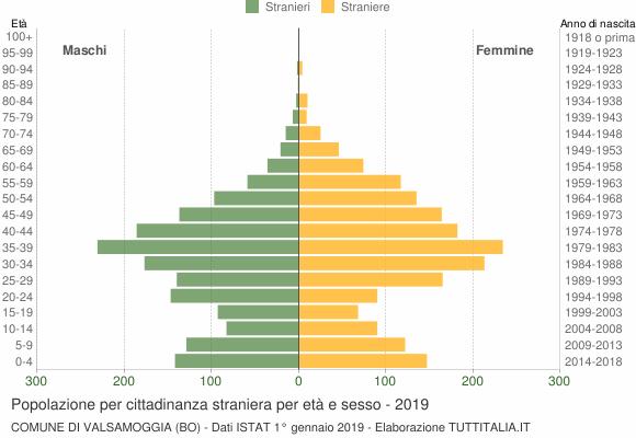 Grafico cittadini stranieri - Valsamoggia 2019