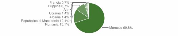 Grafico cittadinanza stranieri - Castel del Rio 2007