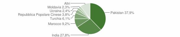 Grafico cittadinanza stranieri - Fabbrico 2009