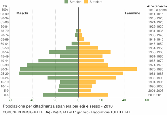 Grafico cittadini stranieri - Brisighella 2010