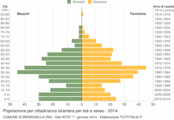 Grafico cittadini stranieri - Brisighella 2014